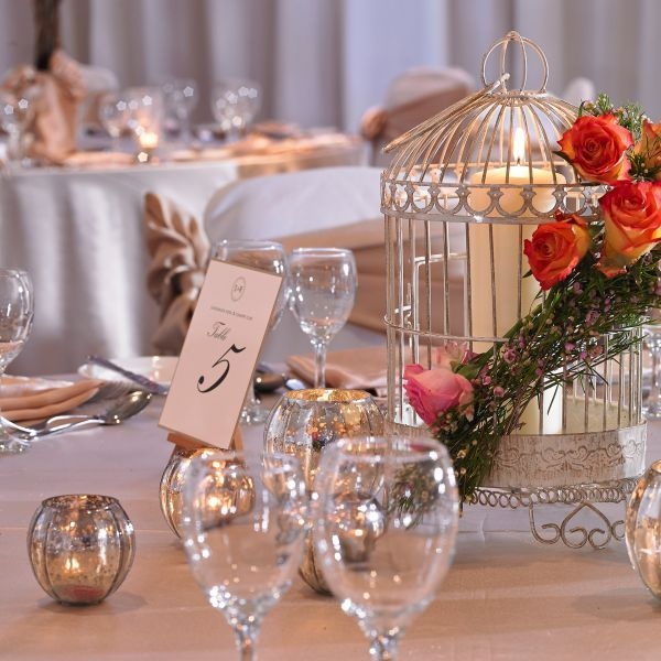 table_image_with_bird_cage